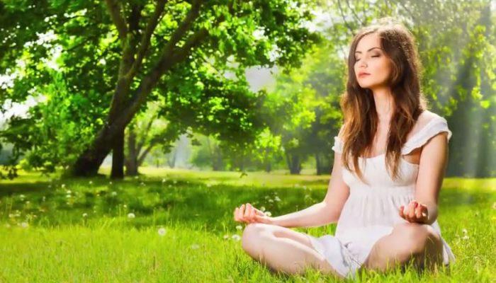 Meditatie Dolphinflow